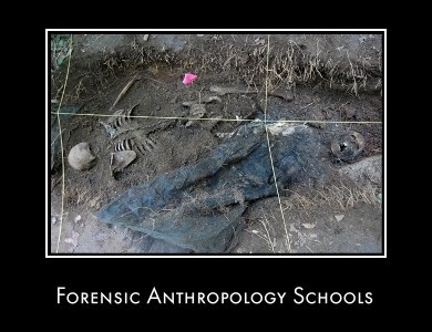 Anthropology universities courses