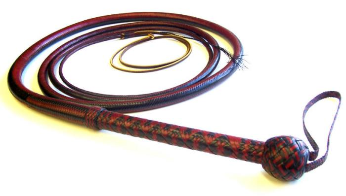 Bullwhip, Red and Black 24 Plait 2-tone
